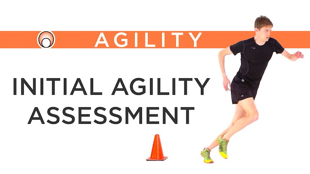 Initial Agility Assessment