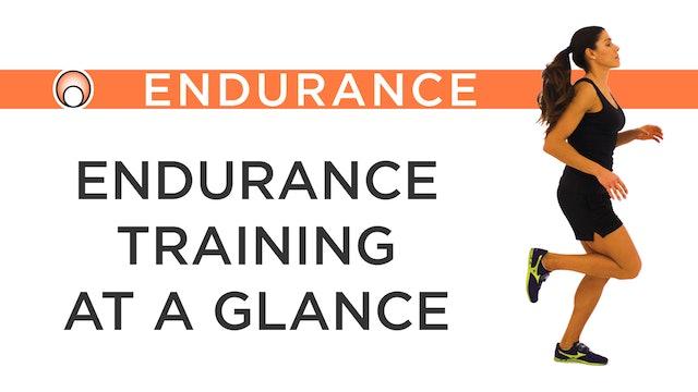 Endurance Training at a Glance