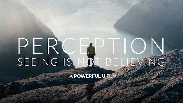 Perception: Seeing is Not Believing