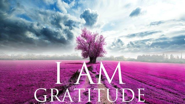 I AM Affirmations - Gratitude & Self ...