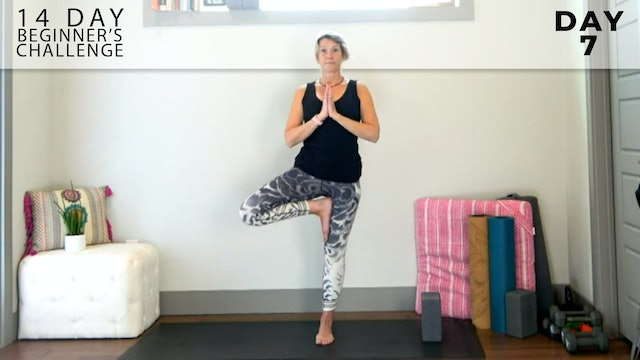 Adrienne: Welcome to Flow 14 - Standing Balance