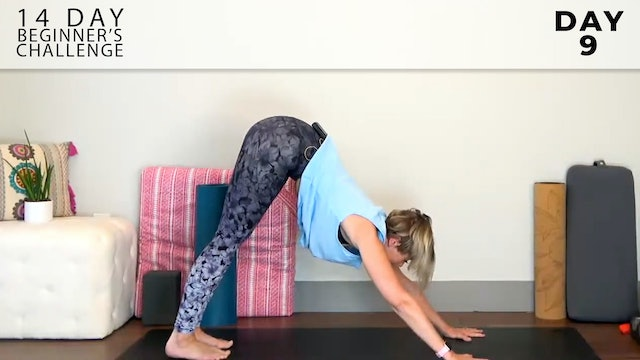 Adrienne: Welcome to Flow - Spine Strengthener