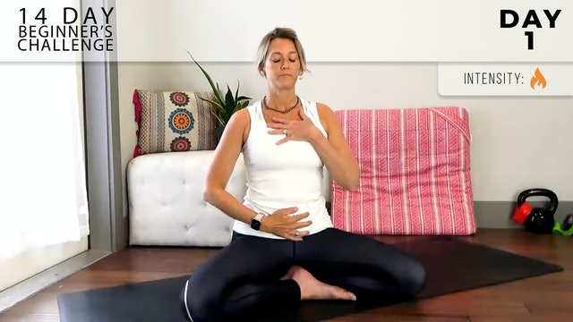 Adrienne: Welcome to Flow - Breath + Movement