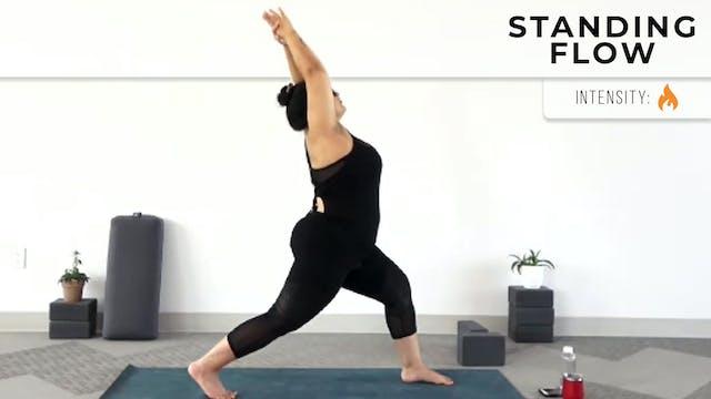 Andrea : Beginner's Yoga - Stabilizin...