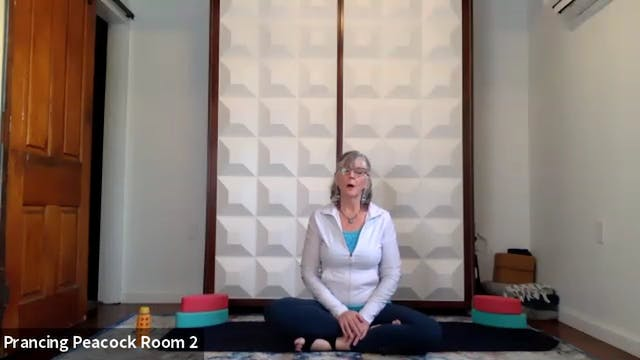 Psoas Release Party with Theresa Tobin-Macy