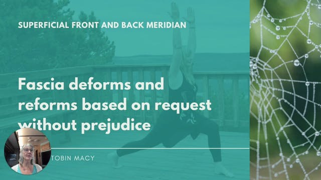 Chapter 4.1: Front and Back Meridian