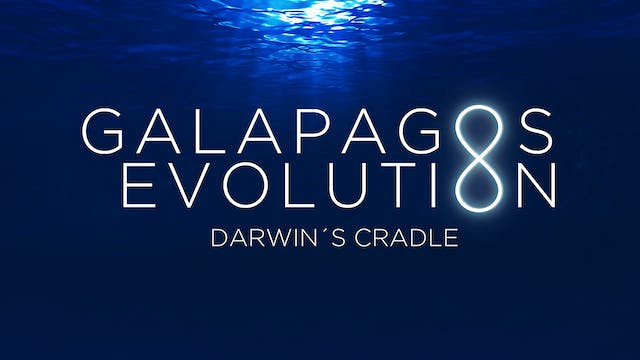 Galapagos Evolution