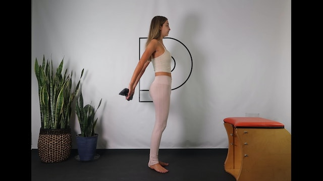 Posture Reset: Arms + Lower Body (33 min) *1-2 lb weights, towel, and chair