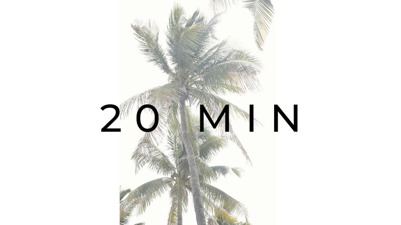 20 MIN