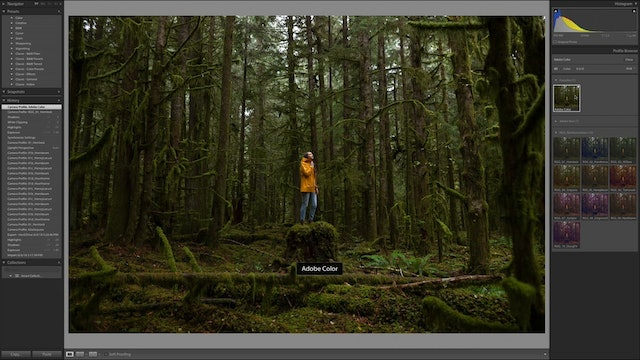 How To Use Northwest Haze In Adobe Lightroom