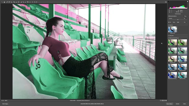How To Use Psychedelic Shores In Adobe Camera RAW
