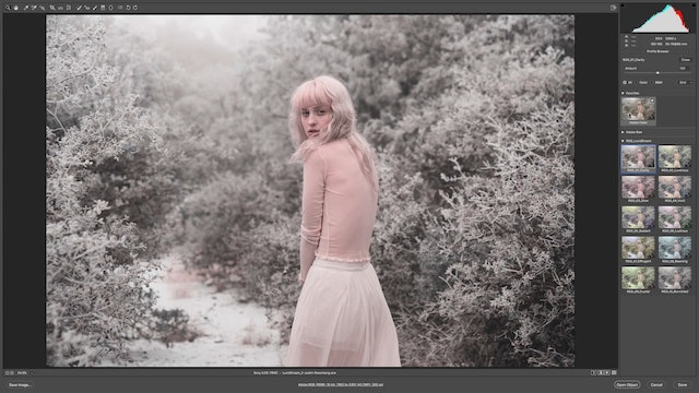 How To Use Lucid Dream In Adobe Camera RAW