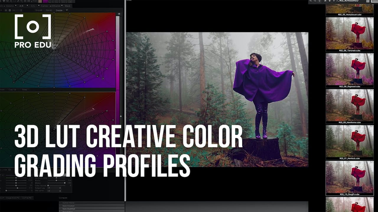 Master Collection | 100 3D LUT Profiles for Adobe