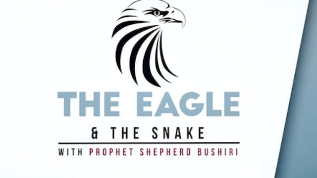 The Eagle & the Snake