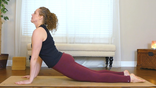 Upward-Facing Dog (Urdhva Mukha Svanasana)