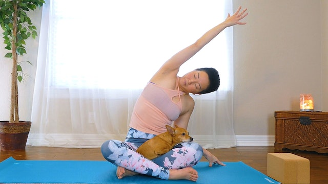 10 Minute Yin Yoga with Side Body Stretches for Quick Relaxation
