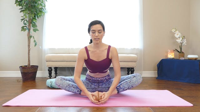 Day 11: Crow Pose Challenge