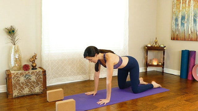 1 Hour Yoga for Weight Loss - Rev Up Your Metabolism & Fat Burning