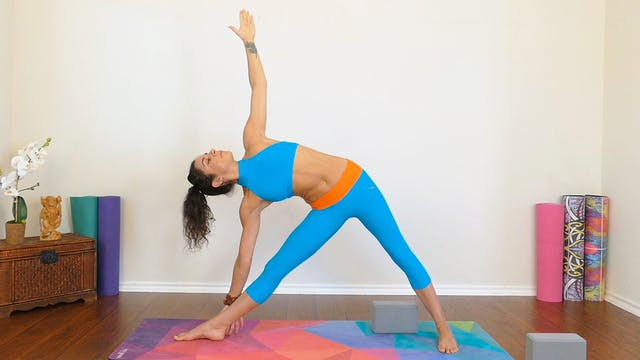 Day 9: Triangle Pose