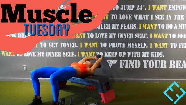 MUSCLE TUESDAY   FULL BODY