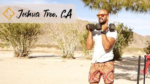 Joshua Tree Desert Pump Express with Paulo