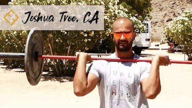 Tool Variation in Joshua Tree with Paulo