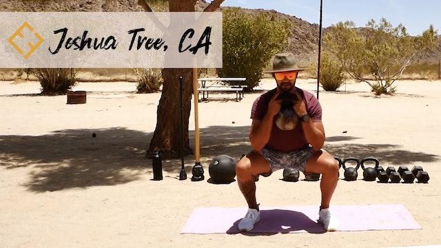 Joshua Tree Desert PUMP with Paulo