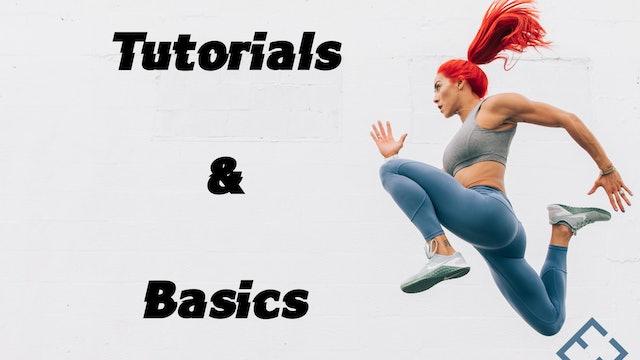 Tutorials & Basics