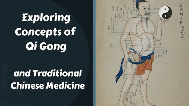 Exploring the Concepts of Qi Gong and Traditional Chinese Medicine