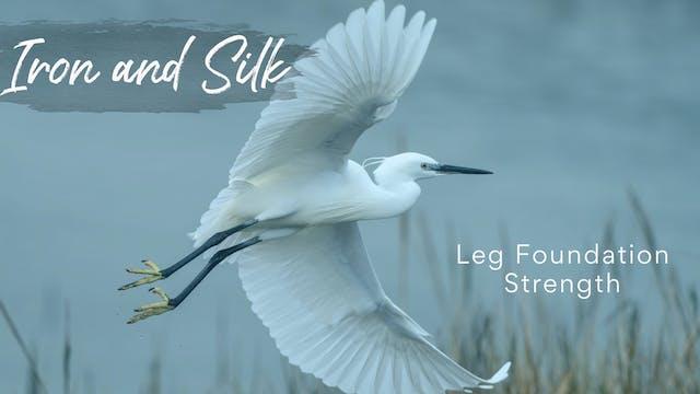Iron and SIlk - Leg Foundation Streng...