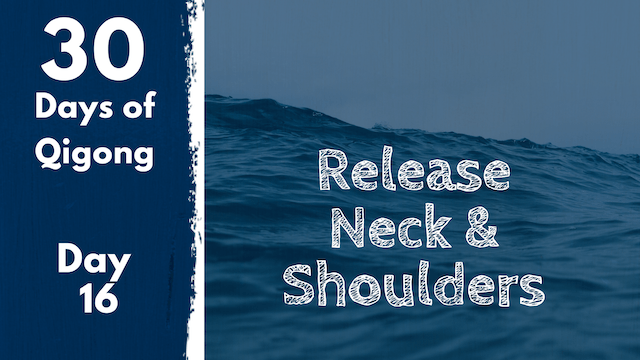 Day 16 Release Neck and Shoulders (11 mins)