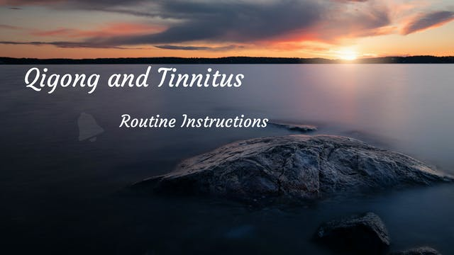#5) Tinnitus Routine Description (11 ...