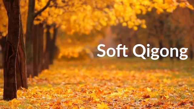 Soft Qigong (15 mins)