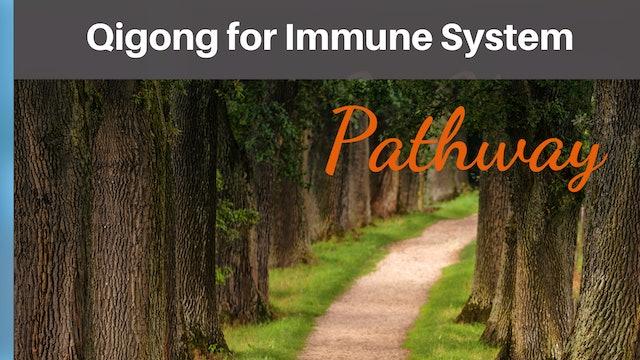 Qi Gong for Immune System Qi-T-Sheet.pdf
