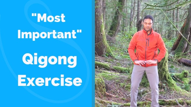 """Most Important"" Qigong Exercise for Beginners (8 mins)"