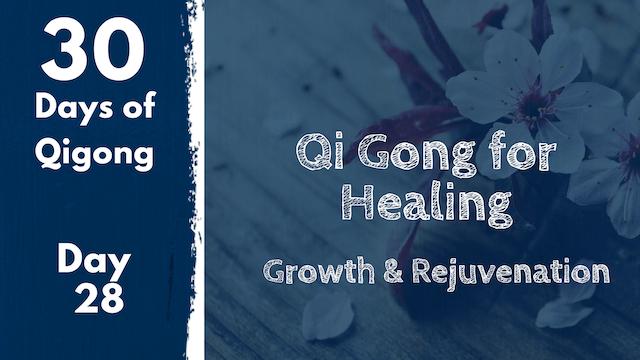 Day 28 Qi Gong for Healing (25 mins)