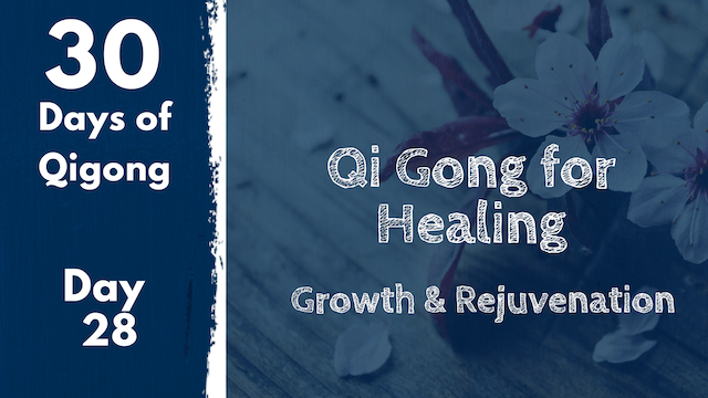 Day 28 Qi Gong for Healing (25 mins)