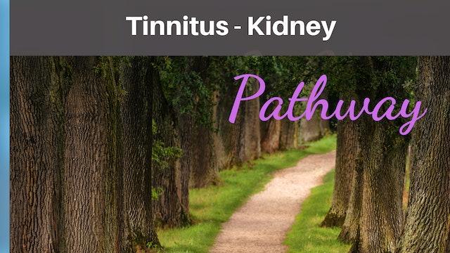 Tinnitus Kidney Qi-T-Sheet