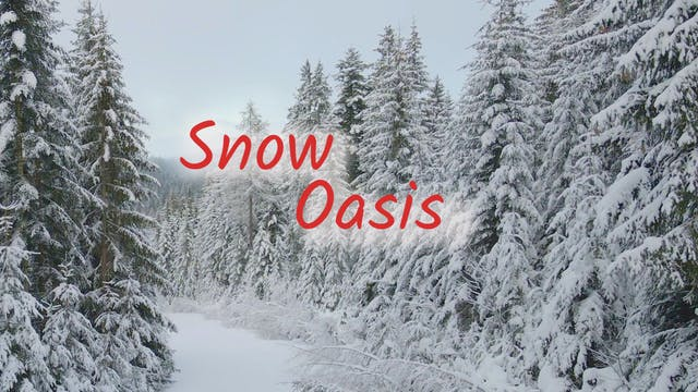 Snow Oasis (12 mins)