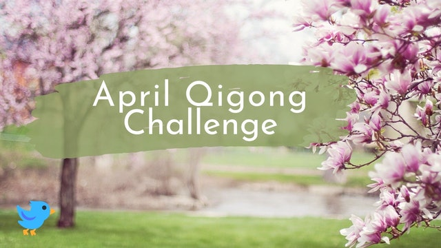 April Qigong Challenge (3 mins)