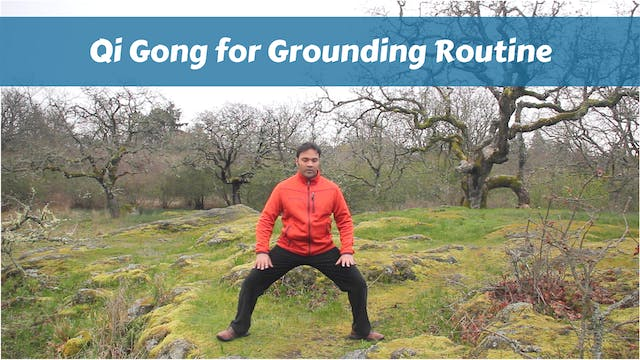 Qigong for Grounding Routine (10 mins)
