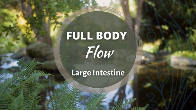 Full Body Flow - Large Intestine (60 ...