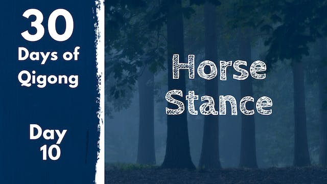 Day 10 Horse Stance (21 mins)
