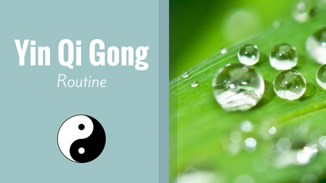 Yin Qigong Routine (12 mins)