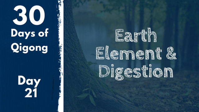 Day 21 Earth Element and Digestion (20 mins)