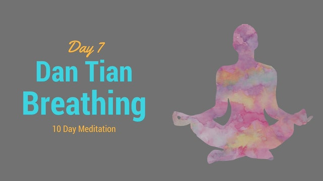 Day 7 Meditation - Dan Tian Breathing (6 mins)