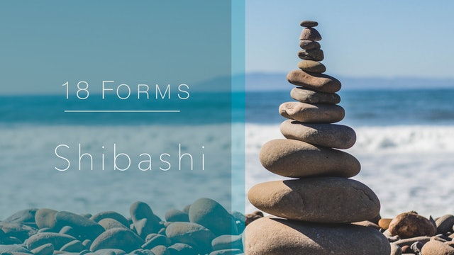 18 Forms - Shibashi (38 mins)