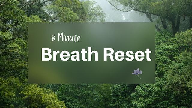 Breath Reset (8 min)