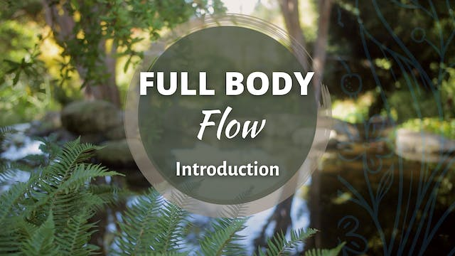 Full Body Flow Introduction (4 mins)