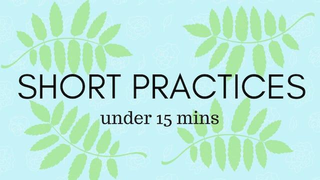 Short Practices